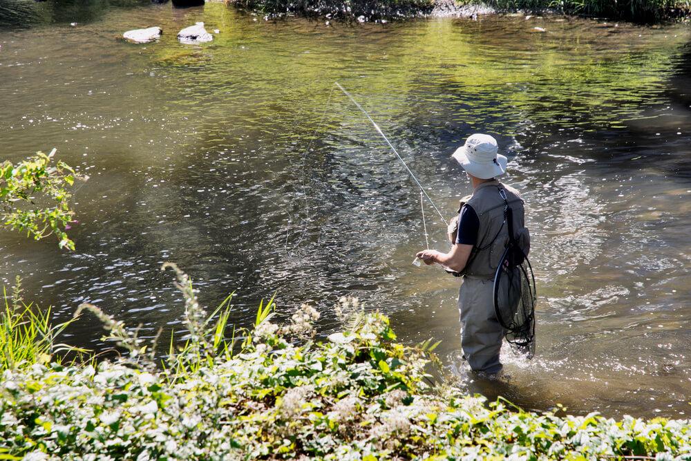 pescaria em rios