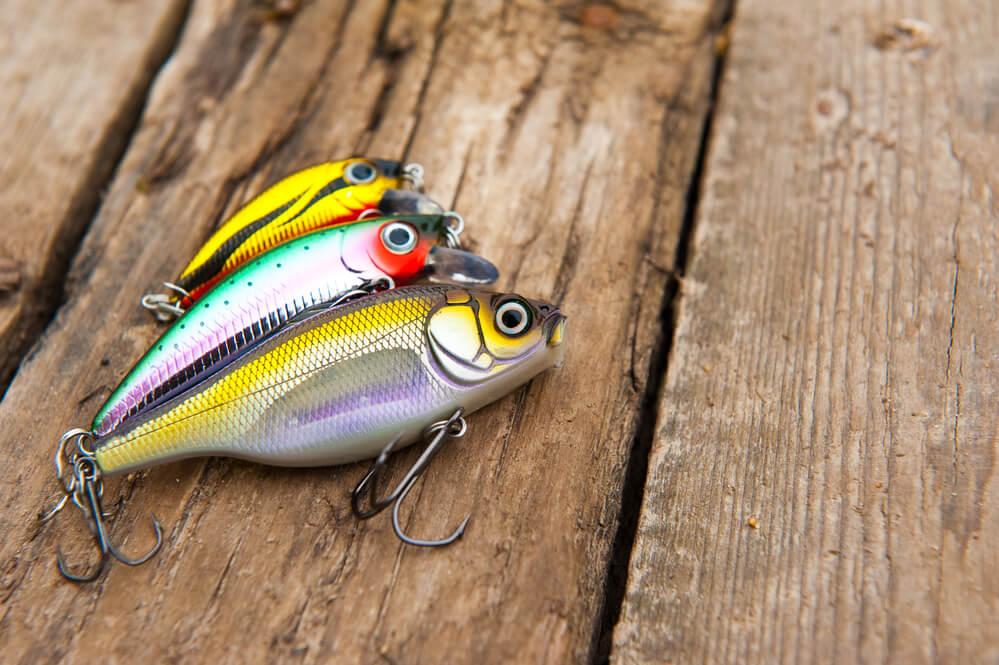 tipos de iscas para pesca
