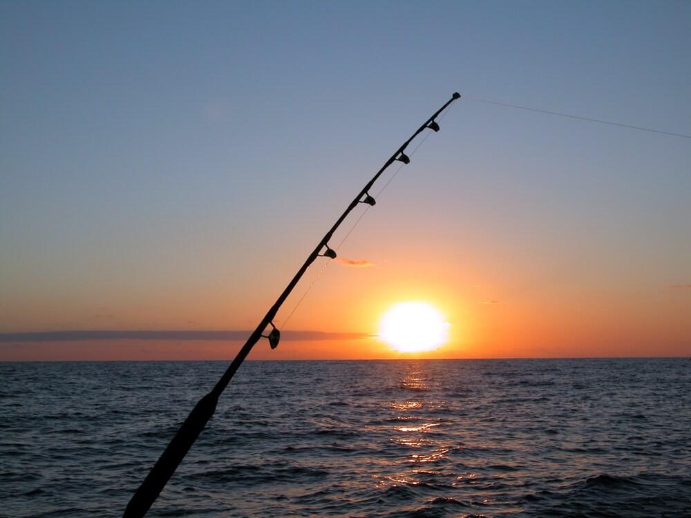 cuidados necessários ao pescar