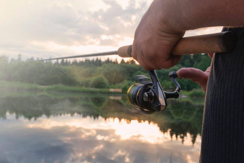 pescando corvina
