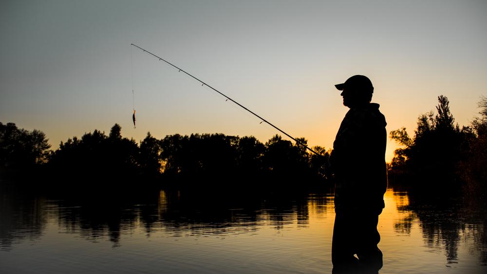 como pescar pintado