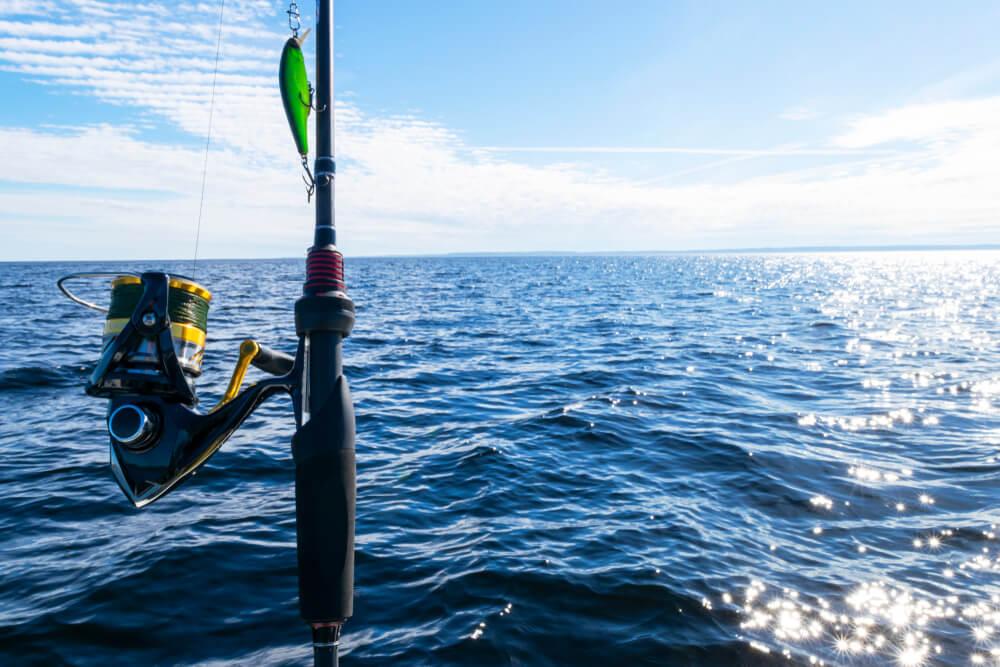 como pescar peixe espada