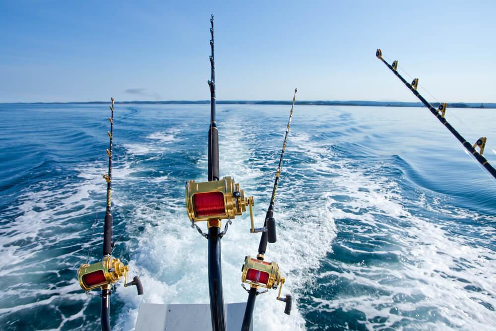 molinetes, ótimos equipamentos para pesca em alto mar