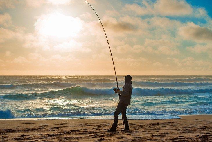 peixes de água salgada qual a melhor época para pescar na água salgada