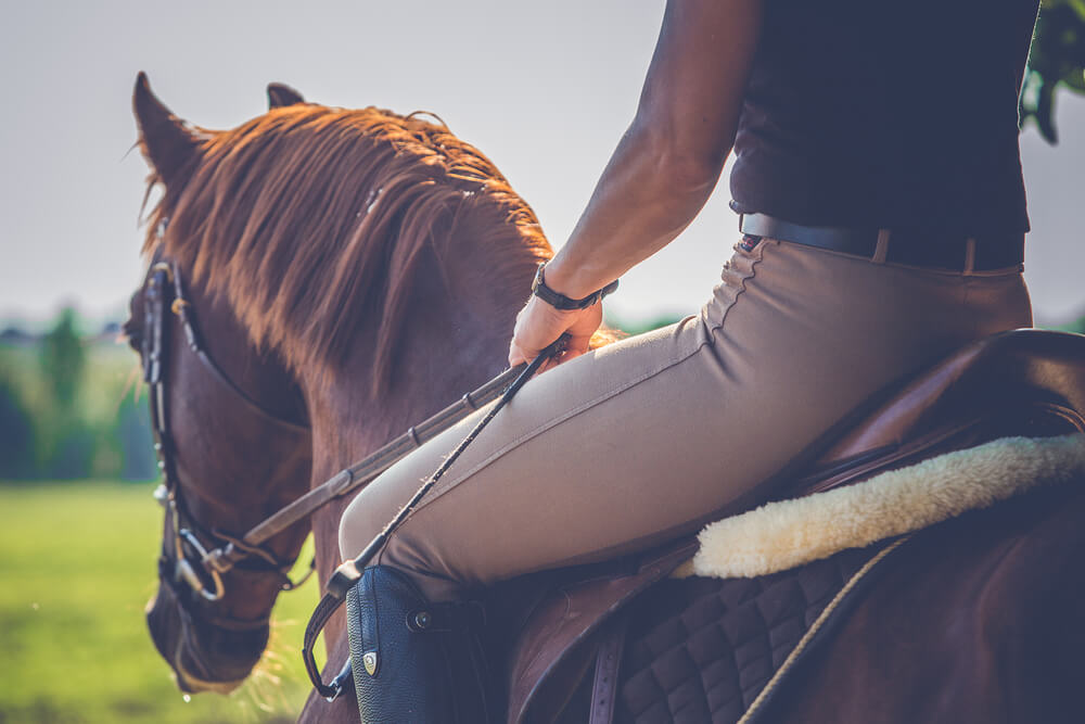 camisa cavalo