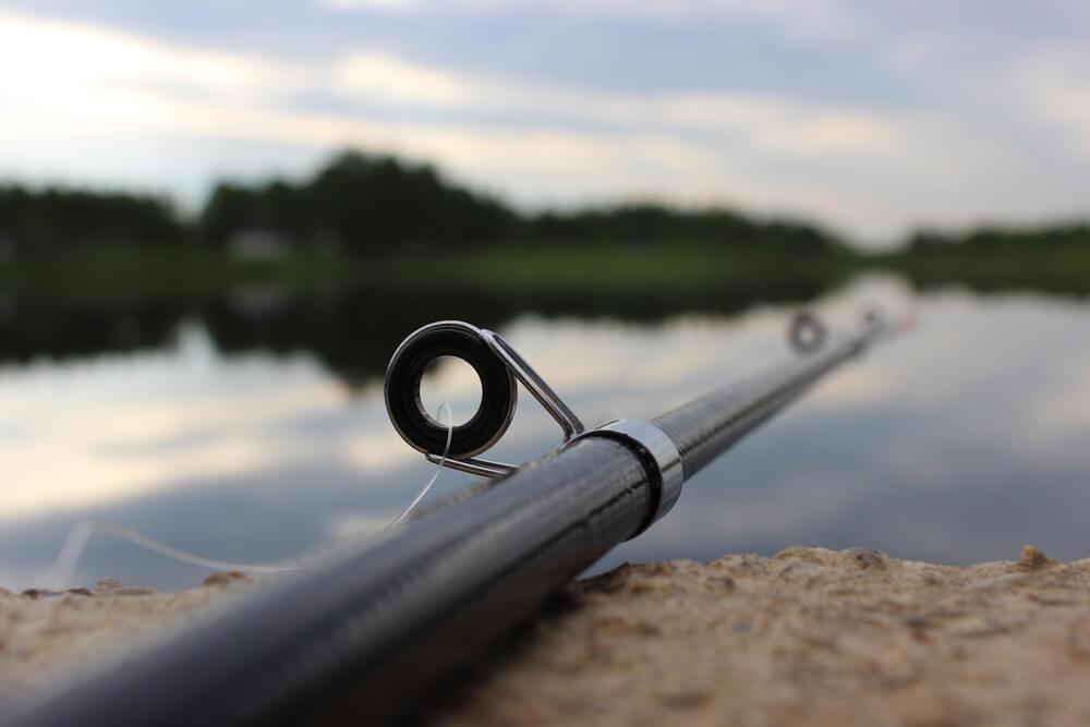 como pescar tainha escolha bons equipamentos